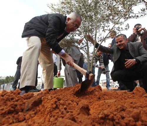 رئيس الوزراء الدكتور سلام فياض يقوم بزراعة شجرة الزيتون في أح د الميادين العامه في طولكرم ضمن حملة فلسطين خضراء